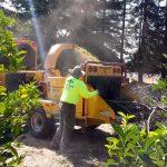 Father's Touch, Inc. Complete Tree Care Service