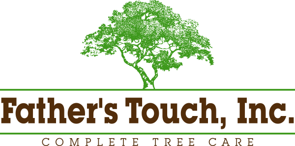 Father's Touch, Inc.